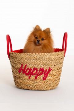 PANIER HAPPY